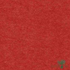 Papel de Parede Liso My Colors MY010102R