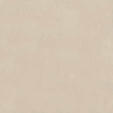 Papel de Parede Picasso Ref: AB0001-08