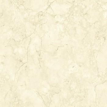 Papel de Parede Picasso Ref: E855-27
